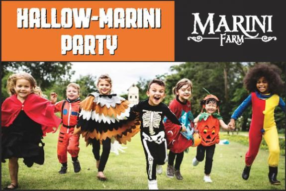 The 2019 Marini Farm Corn Maze in Ipswich Massachusetts!
