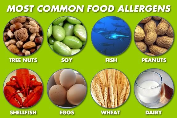 Learn about food allergies and less allergenic alternatives at CMNH