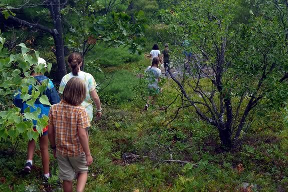 Hike Mount Agamenticus in Maine with Mass Audubon's Joppa Flats Education Center during April Vacation!
