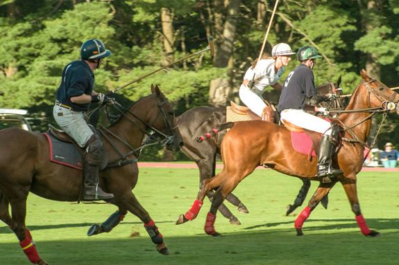 Polo at Myopia Hunt Club in Hamilton MA