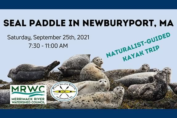 Join the Merrimack River Watershed Council on a wildlife-focused kayaking trip with Plum Island Kayak.