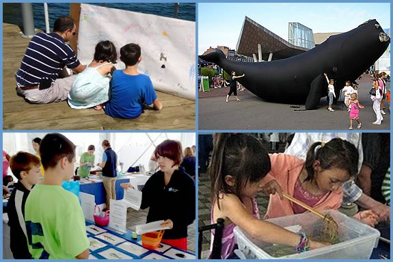 Learn with the Family at New England Aquarium!