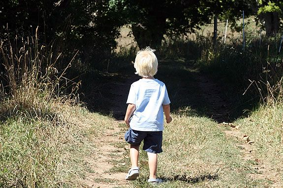 Explore the trails and hardly passed roads at Appleton Farms!