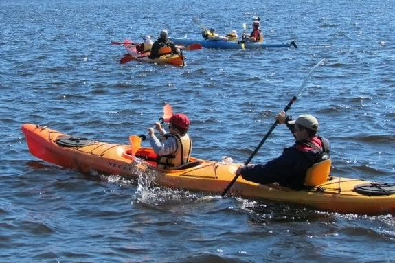 Special rates apply for family kayak tours at Plum Island Kayak every Tuesday!