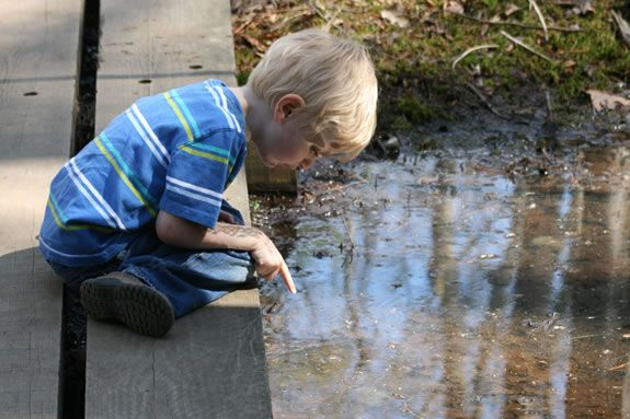 Kids and families are invited to come explore the pond habitat witht naturalists from the Joppa Flats Education Center in Newburyport.