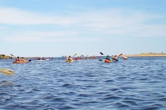 Yankee Homecoming Kayak & Paddle Board River Race. River kayakers.  Photo: Plum Island Kayak