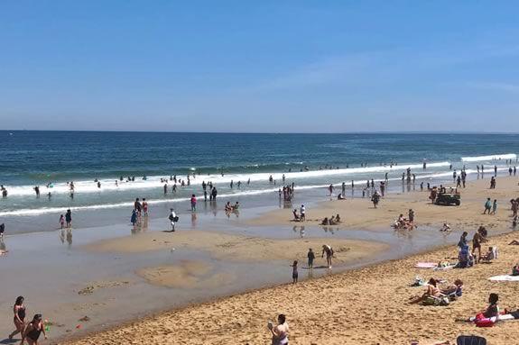 CoastSweep cleanup at Salisbury Beach Massachusetts