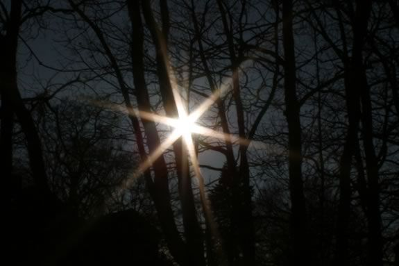 Come celebrate the longest night - Winter Solstice - at Joppa Flats Education Center in Newburyport