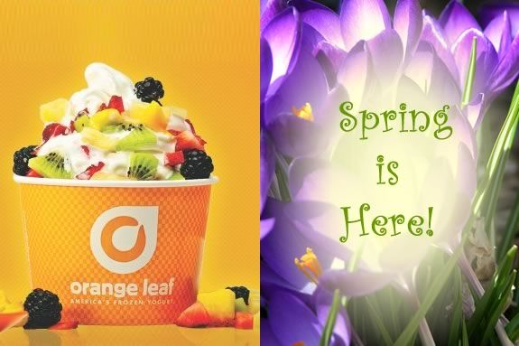 Have some frozen yogurt and stay for a story and craft session at Orange Leaf Fr