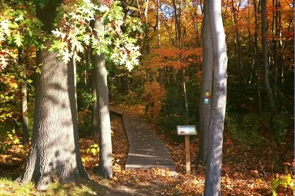 The Stevens to Stevens trail head in North Andover. Photo: Friends of North Andover Trails