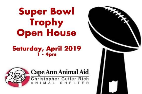 Come to the Super Bowl Trophy Open House at the Cape Ann Animal Aid in Gloucester Massachusetts