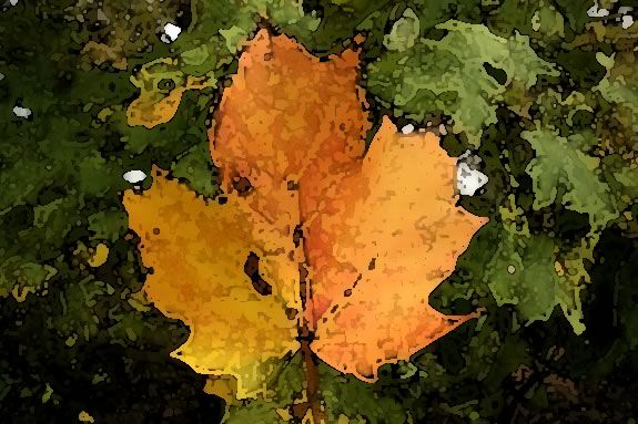 Kids will study and paint the nuances of leaves, nuts and berries at IRWS.