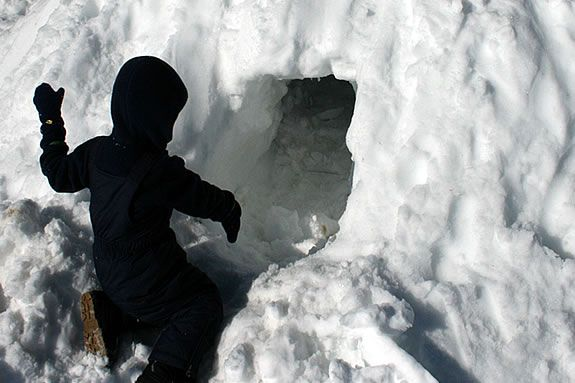 Build igloos and learn how to find winter ohme for animals at IRWS's workshop