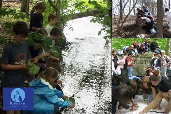 Kids will learn about ecology, film-making and working in teams in this workshop