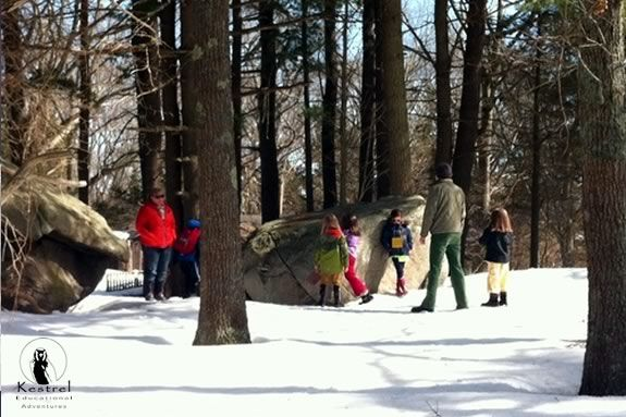 Explore the woods of the North Shore with naturalists from the Kestrel Education!