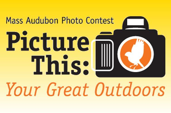 Mass Audubon's picture this contest is all about having fun whild helping out.