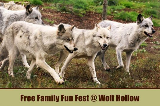Wolf Hollow Ipswich MA Memorial Day Weekend Free Family Fun Fest Day