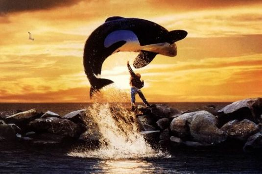 Watch Free Willy at the Parker River Wildlife Refuge in Newburyport