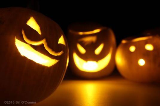 Come carve pumpkins at Art Haven in Gloucester Massachusetts!