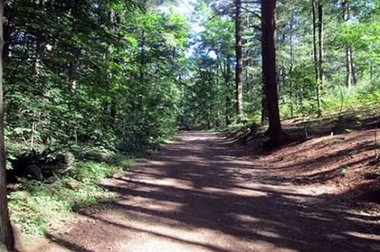 Hike the trails of Lynn Woods with your family in Lynn Massachusetts