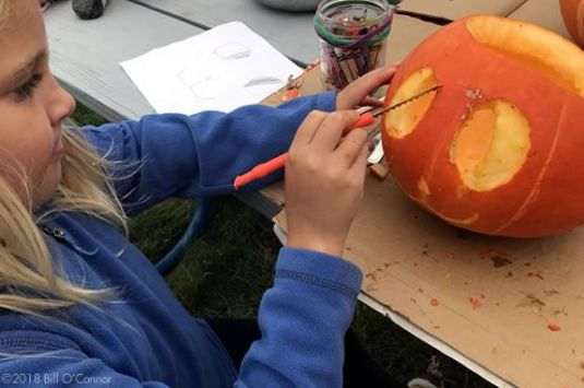 Come to a free pumpkin carving session at the Trustees' Appleton Farms in Ipswich Massachusetts! Pumpkin Carver ©2018 Bill O'Connor